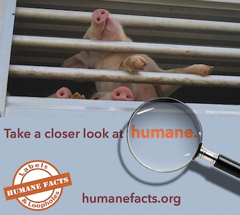 Humane Facts Meme