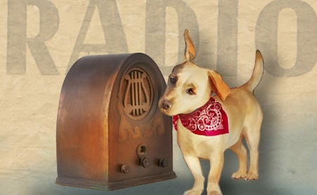 Dog listening to radio