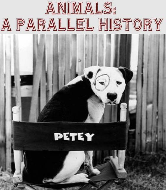 Animals - A Parallel History Documentary