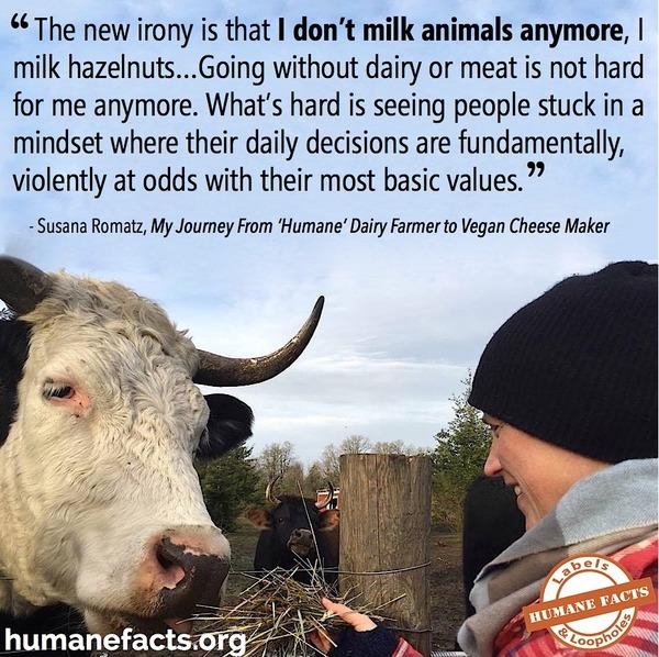 Dairy Farmer to Vegan Cheesemaker