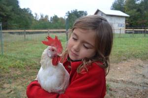 Piedmont Farm Animal Sanctuary
