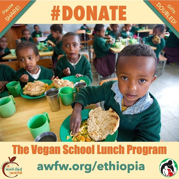 Ethiopian School Lunch Meme