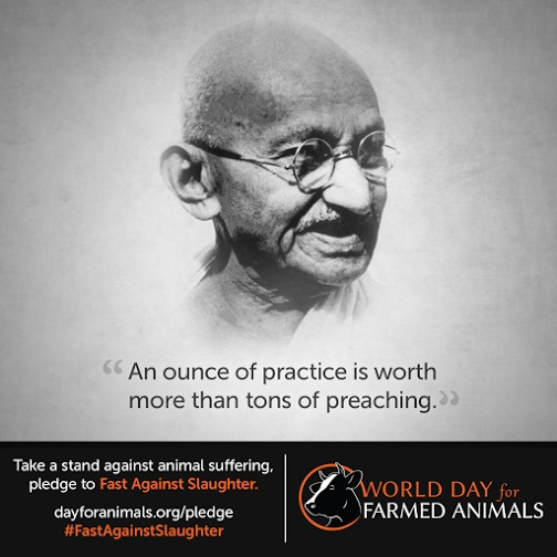 World Day for Farmed Animals - Gandhi