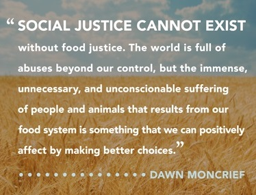 circles of compassion book is here book   dawn quote